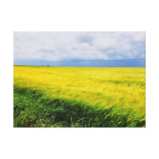 Grass field canvas print