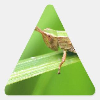 Grass Hopper on Leaf Triangle Sticker