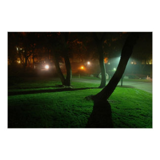 Grass in the fog poster