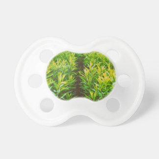 grass pacifier