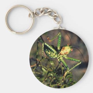 Grasshopper Basic Round Button Keychain