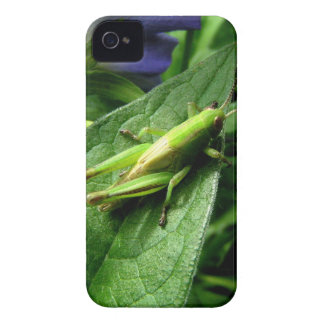 Grasshopper iPhone 4 Covers