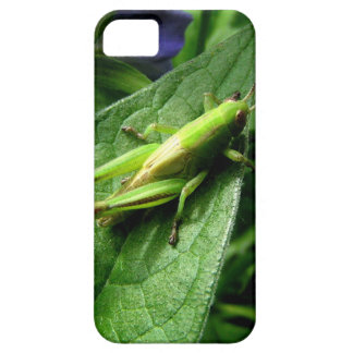 Grasshopper iPhone 5 Cases