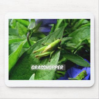 Grasshopper on leaf mouse pad
