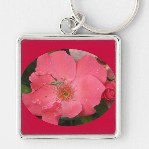 Grasshopper on Pink Rose Key Chains