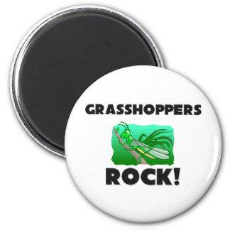 Grasshoppers Rock Magnet