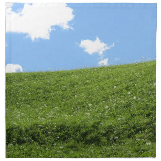 Grassy field at the rolling hill against the sky napkin