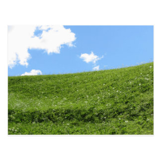 Grassy field at the rolling hill against the sky postcard
