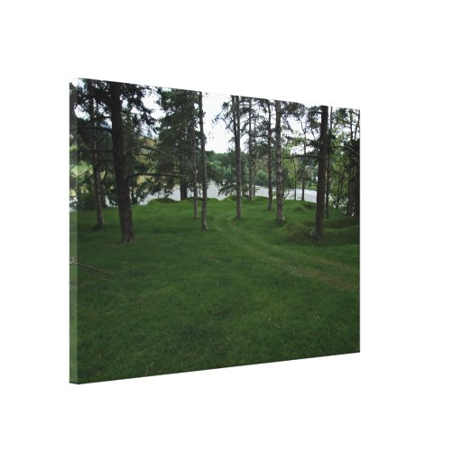 Grassy ground with trees and water stretched canvas print
