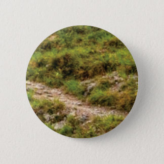 grassy path 2 inch round button