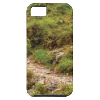 grassy path case for the iPhone 5