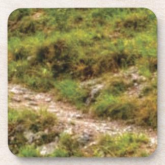 grassy path coaster