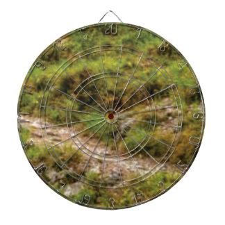 grassy path dartboard