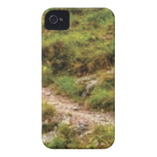grassy path iPhone 4 cover