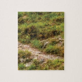 grassy path jigsaw puzzle