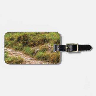 grassy path luggage tag