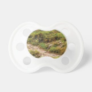 grassy path pacifier