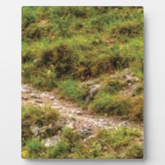 grassy path plaque