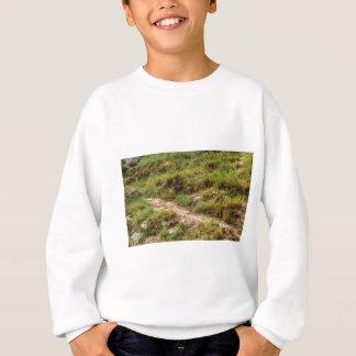 grassy path sweatshirt