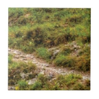 grassy path tile