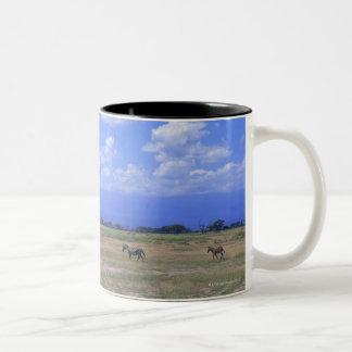 Grassy Plain Two-Tone Coffee Mug