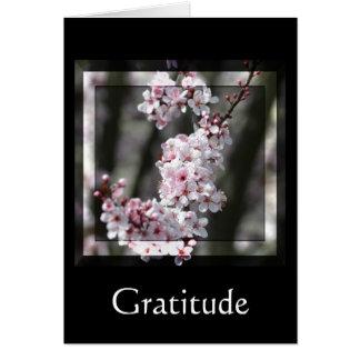 Gratitude Cherry Blossom Floral Card