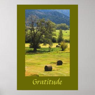 Gratitude Inspirational Poster