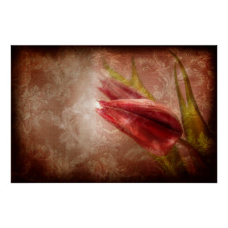 Gratitude Overflowing (Tulip Art Poster) Poster