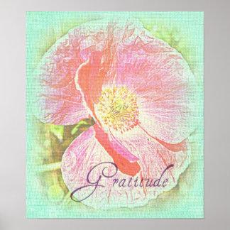 Gratitude Poppy Poster