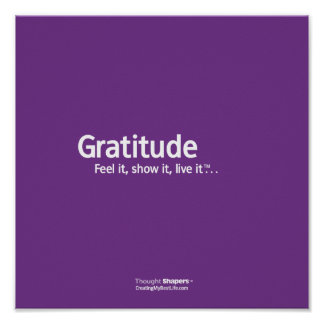 Gratitude Thought Shapers™ Poster