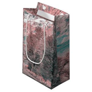 Gravel Empty Road - Parque Nacional Los Glaciares Small Gift Bag