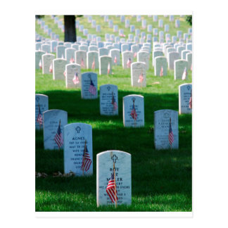 Graves at Arlington Postcard