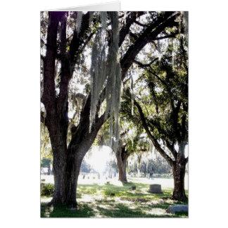 Graveyard Oaks Card and Envelope