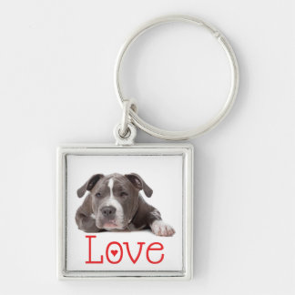 Gray American Staffordshire Terrier Puppy Dog Love Silver-Colored Square Keychain