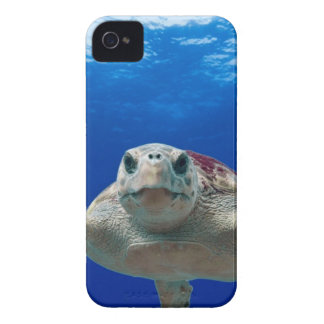 Gray and Green Turtle Swimming on Water Case-Mate iPhone 4 Case