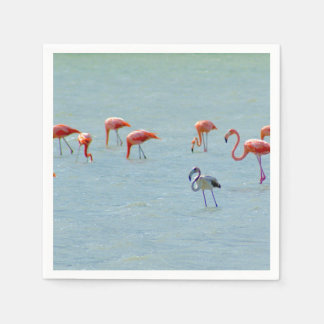 Gray and pink flamingos flock in lake disposable napkin