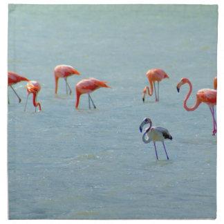 Gray and pink flamingos flock in lake napkin