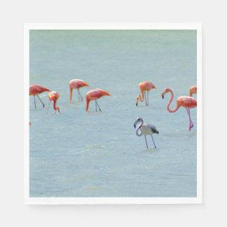 Gray and pink flamingos flock in lake paper napkins