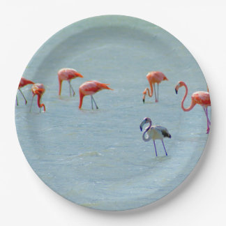 Gray and pink flamingos flock in lake paper plate