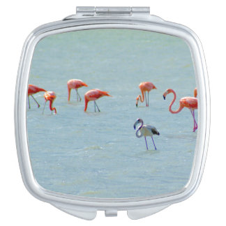Gray and pink flamingos flock in lake vanity mirrors
