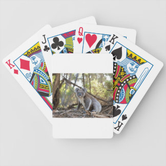 Gray and White Koala Bear Bicycle Playing Cards