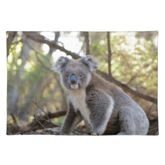 Gray and White Koala Bear Placemat