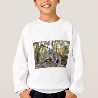 Gray and White Koala Bear Sweatshirt