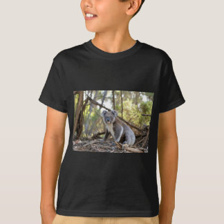 Gray and White Koala Bear T-Shirt