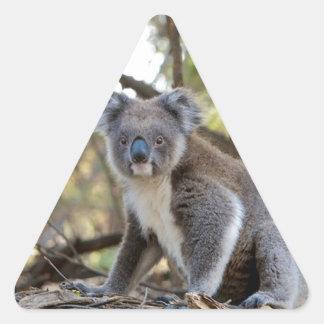 Gray and White Koala Bear Triangle Sticker