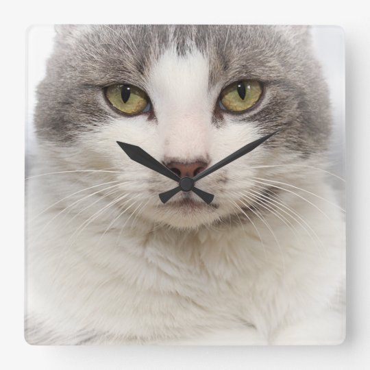GRAY AND WHITE TABBY CAT WALL CLOCK