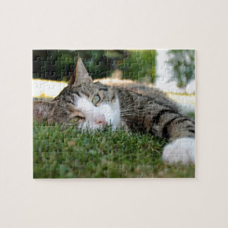 Gray and White Tiger Cat Daydreams on Grass Jigsaw Puzzle