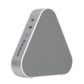 Gray Bluetooth Speaker