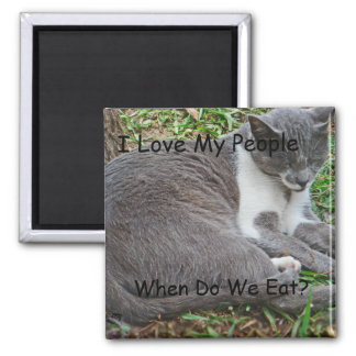 Gray Cat in the Park Magnet