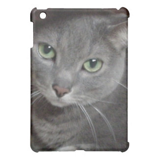 Gray Cat Love/Russian Blue iPad Mini Cases
